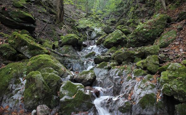 両神山の滝